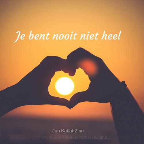 Nooit niet heel- Jon Kabat-Zinn