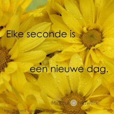 elke second is een nieuwe dag