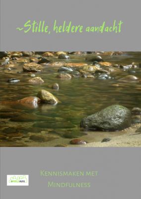 Mindfulnessboek Stille heldere aandacht