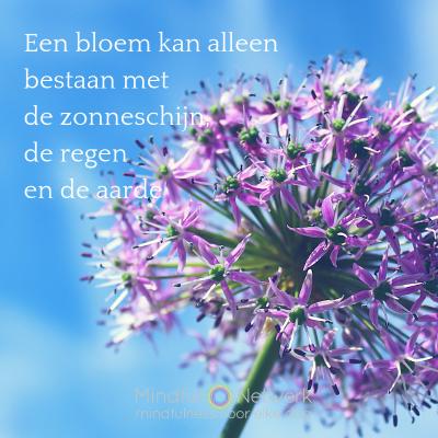 bloem interzijn