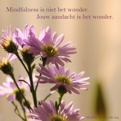 mindfulness is niets