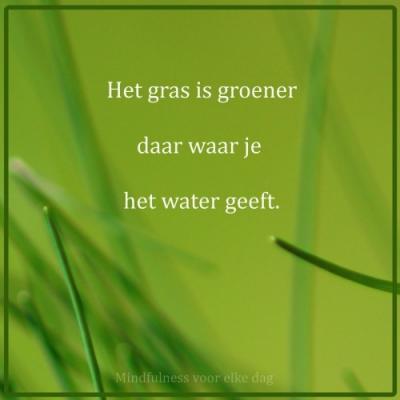 het gras is groener daar waar je het water geeft