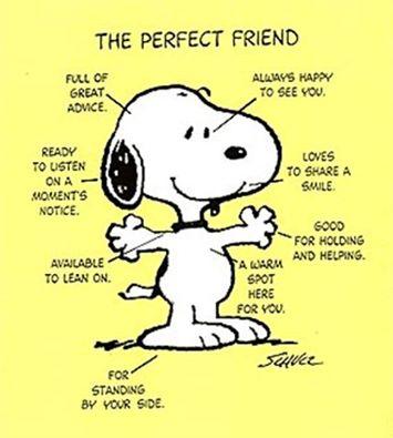 De beste vriend