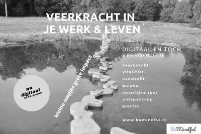 Veerkracht in je werk& leven , een digitale training voor professionals in de jeugdzorg. mindful leren en ontwikkelen