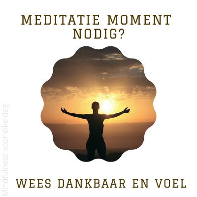 Meditatiemoment nodig? #8