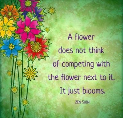 Just bloom…